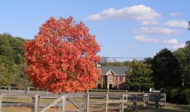 We Buy Homes Fredericksburg, VA